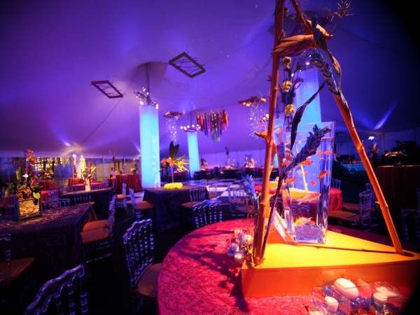 Reception Tent Rental